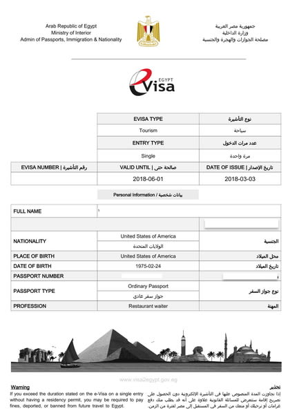 view egypt e visa sample